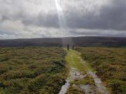 Dartmoor se image